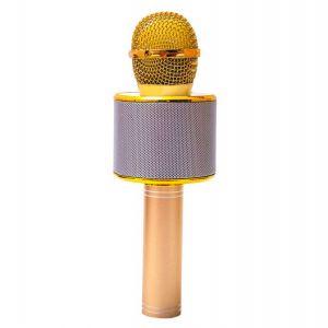 Rankingowy mikrofon dla dzieci